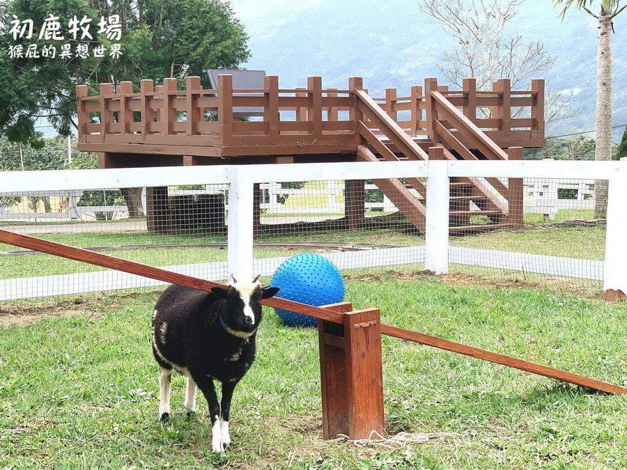 台東初鹿牧場好玩嗎?超多可愛動物享受大自然!初鹿牧場冰淇淋好好吃! @猴屁的異想世界