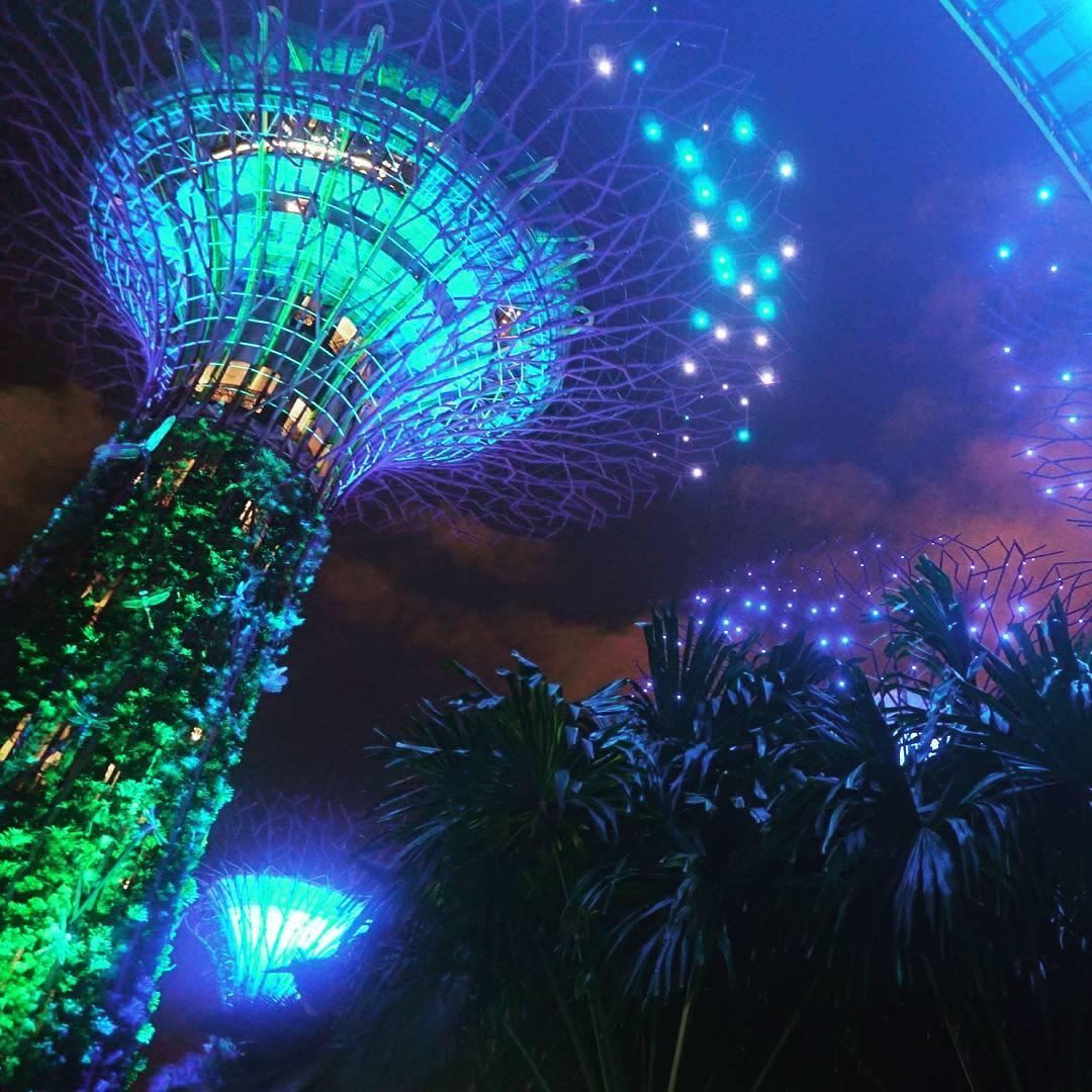 Merlion Park,Super tree,克拉碼頭,哈芝巷,夜間動物園,摩天輪,新加坡,新加坡夜間動物園,新加坡必去景點,新加坡摩天輪,新加坡景點,新加坡海洋館,新加坡自由行,海洋館,濱海灣公園,牛車水,環球影城,聖淘沙,聖淘沙空中纜車,魚尾獅公園